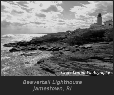 Beavertail_Photo
